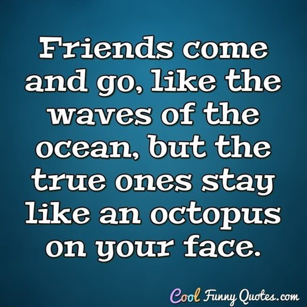 110 True Friendship Quotes And Sayings With Images