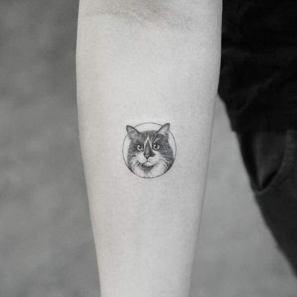 125 Cute Cat Tattoo Designs And Ideas That You Will Love To Have