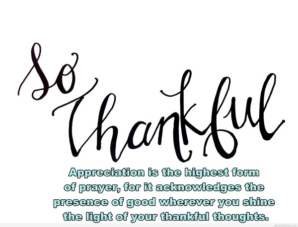 Thankful Quotes: 104 Thankful Quotes And Sayings That Will Change Your Life