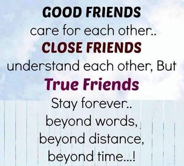 121 True Best Friend Quotes For You And Your Lovable Bestie